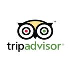 tripadvisor-bulb